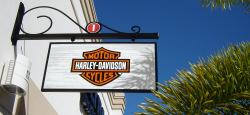 harley davidson florida harley vermietung shops. Black Bedroom Furniture Sets. Home Design Ideas